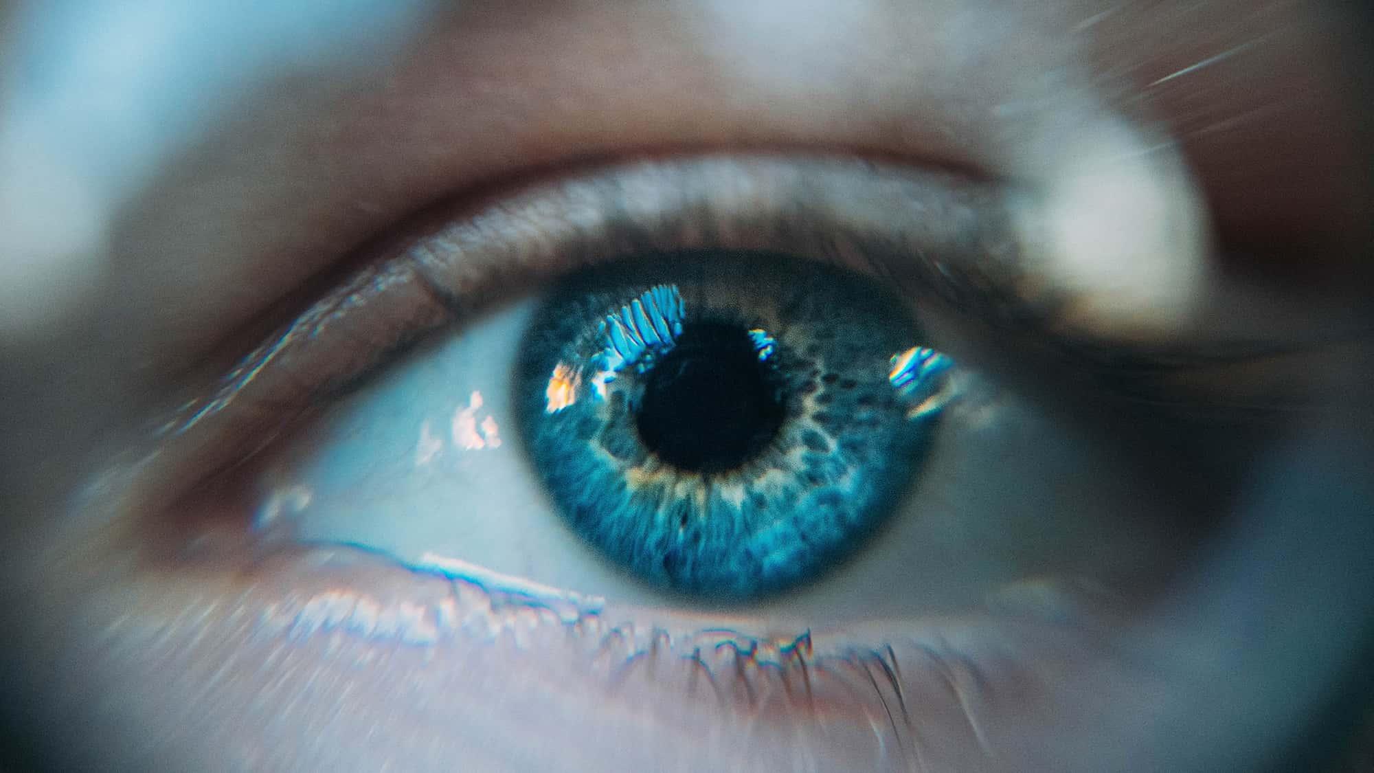 Percezione visiva - La Gestalt nell Graphic Design